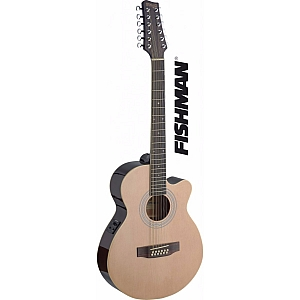 Stagg 12 String Electro-Acoustic Guitar