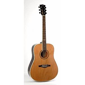Eko NXT Acoustic Guitar