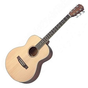 James Neligan ASY-A Acoustic Guitar