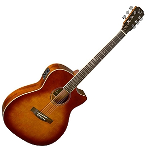 James Neligan BES-ACE-DCB Electro-Acoustic Guitar